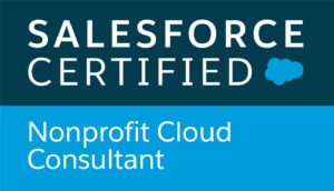 Nonprofit Cloud Consultant